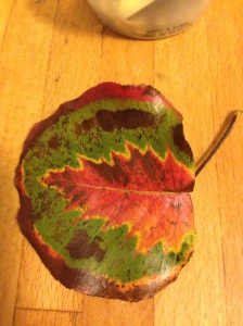 If a tree can artistically render another tree species in its leaf, I can write a blog post.