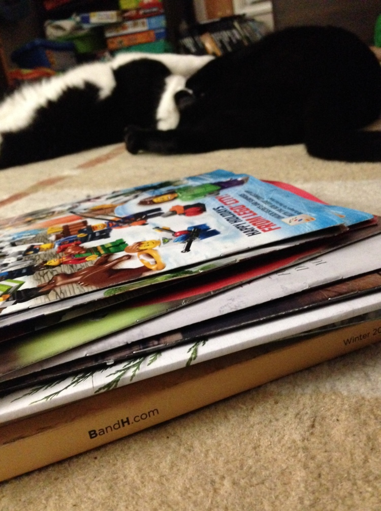 actual holiday catalogs that arrived today and cats fighting over them.